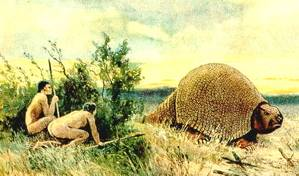 Fishermen discover the giant shell of an extinct Glyptodon which lived 10.000 years ago in Argentina Glyptodon-299-176-13