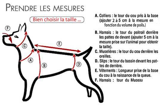 Harnais Animalin - Page 8 Tailles1