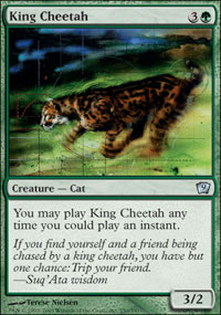 Tests Magic King_cheetah