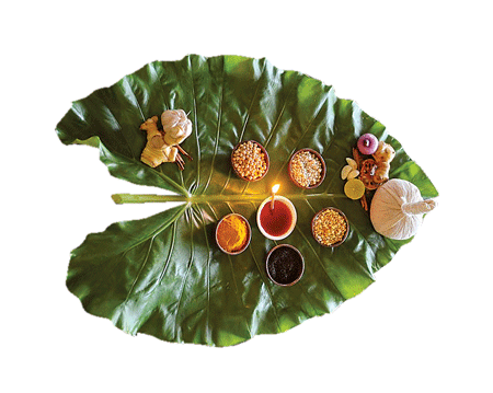 Istorija bilja  Indija-450