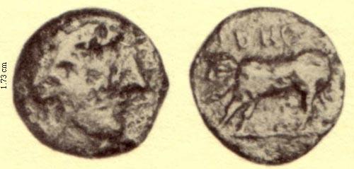 AE 17 de Irnum, Campania IrnumHNI543_3.73