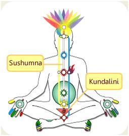 Kundalini: L'Éveil du Serpent de Feu Kundalini-1