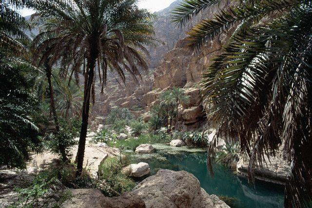 أجمل الصور السياحيه في عمان  134_3431_1065626679