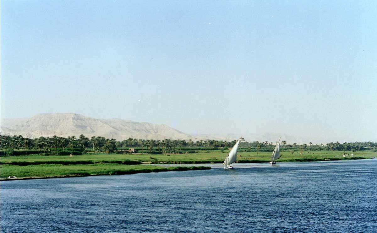 صور نهر النيل 40_204981_1274429337