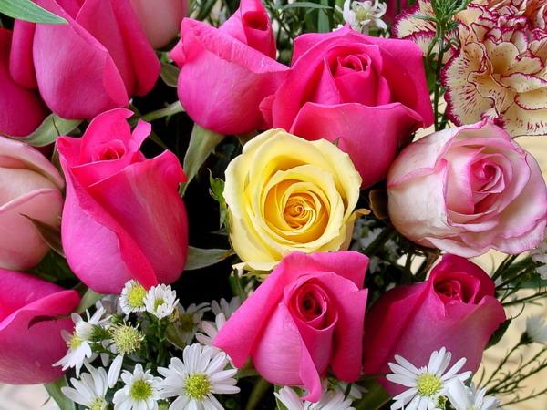 الاصدار الثالث من مجلة الزهور 41_17618_1199952925