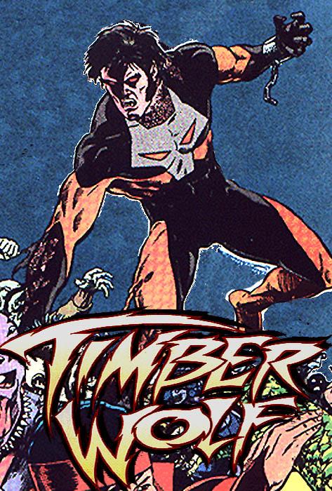 Marvel vs DC TWolf1