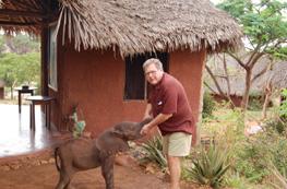The David Sheldrick Wildlife Trust - Nursery per piccoli elefanti e rinoceronti Elefantino%20marano