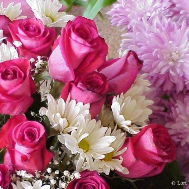 زهور بجد جميله 41_2_1058166953.preview