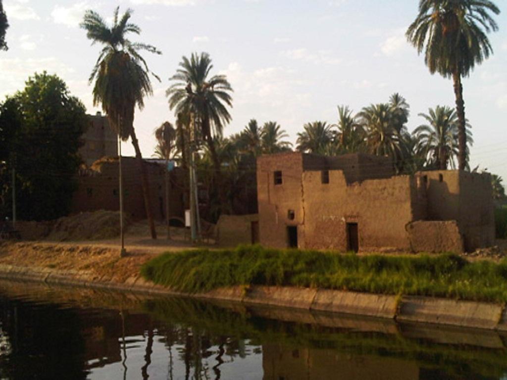 فيروس يضرب قري الصعيد و42 حالة وفاه علي الاقل بسبب موجة الحرفي مصر  %D8%A7%D9%84%D8%B5%D8%B9%D9%8A%D8%AF
