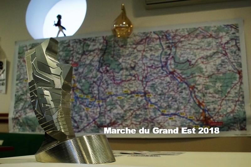 31-03 au 01-04-2018 La Marche du Grand Est - Page 2 DSC01834