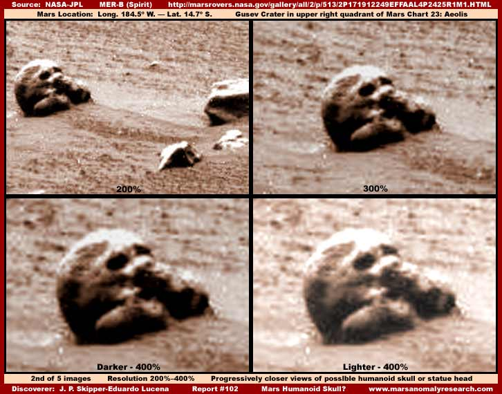 Lice s Marsa - Page 2 2-102-skull-closer-views