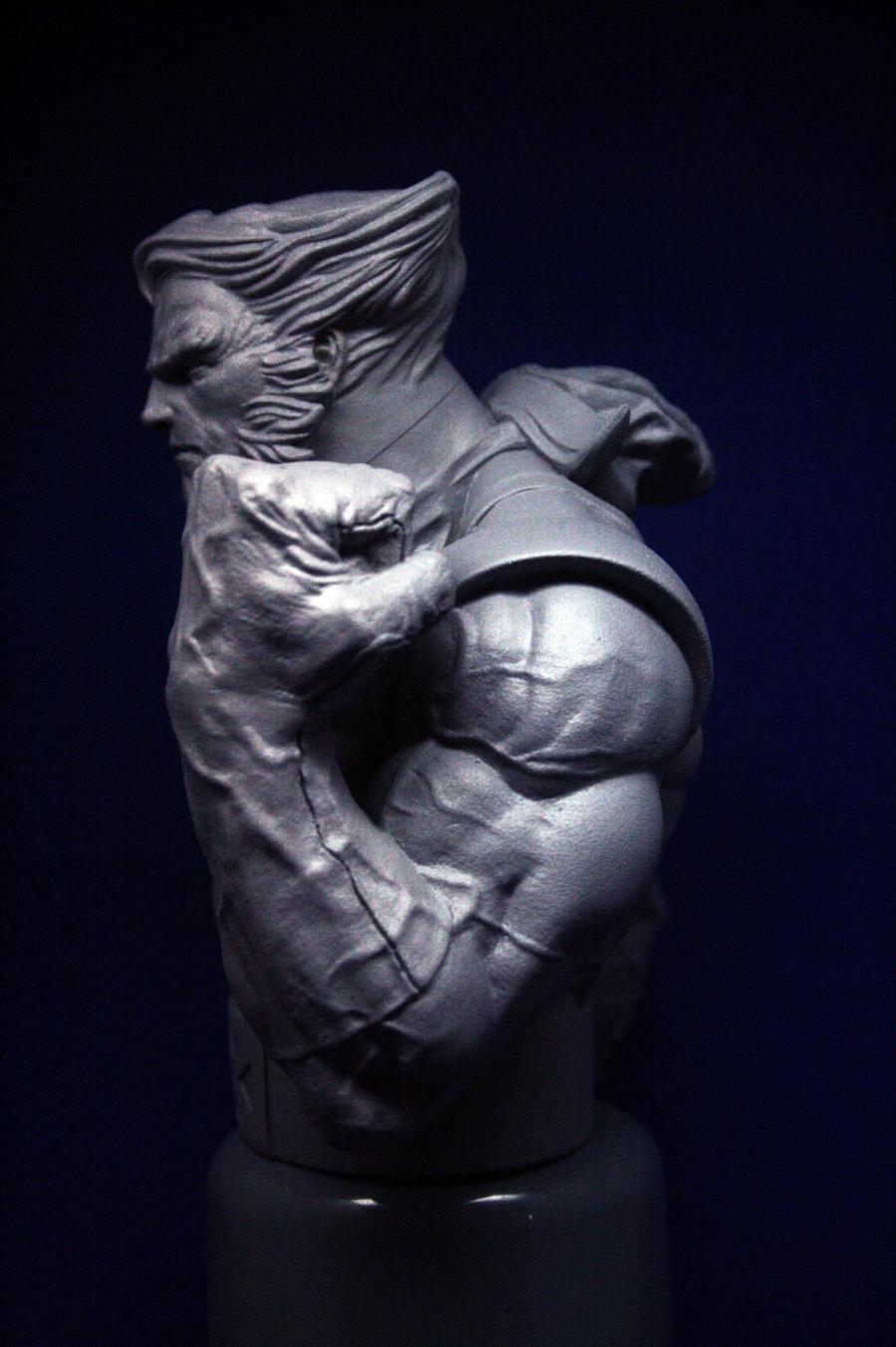 Les travaux de Thiago Provin Wolverine___Fallen_Son_3_by_ThiagoProvin