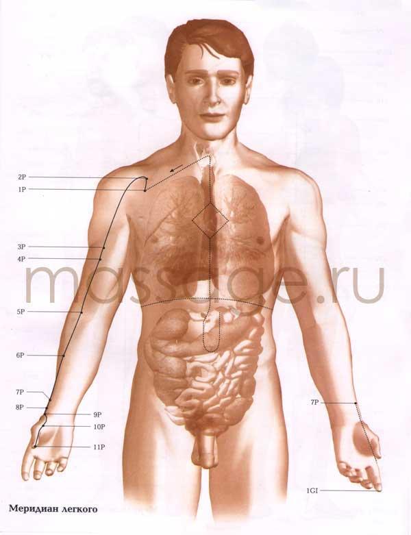 Атлас точек акупунктуры  Lung