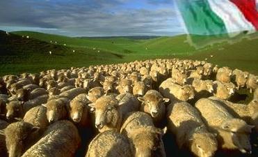 Aboliamo la RAI - Pagina 2 Foto-pecore