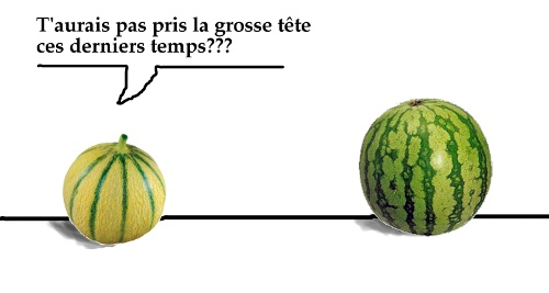 Melon VS Pastèque - Page 2 Melon_pasteque