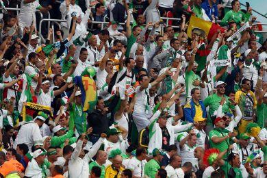 احتفالات الخضر تجتاح البرازيل 1