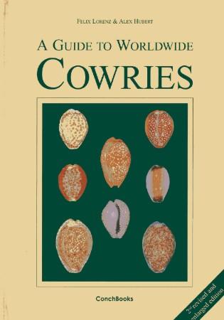 Muracypraea mus bicornis  -  (G. B. Sowerby II, 1870) - Page 2 Cowries