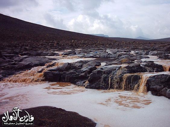 صور للأمطار والسيول على منطقة تبـــوك ... السبت 7 /12 / 1426 هـ  Mk9543_rt11