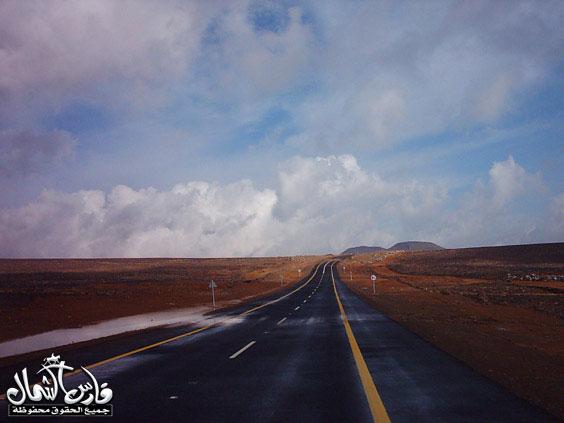 صور للأمطار والسيول على منطقة تبـــوك ... السبت 7 /12 / 1426 هـ  Mk9543_rt13