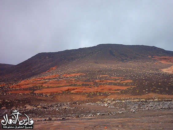 صور للأمطار والسيول على منطقة تبـــوك ... السبت 7 /12 / 1426 هـ  Mk9543_rt18