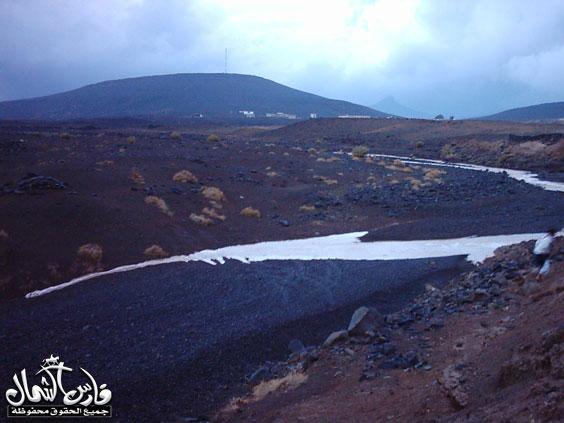 صور للأمطار والسيول على منطقة تبـــوك ... السبت 7 /12 / 1426 هـ  Mk9543_rt2