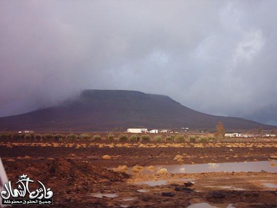 صور للأمطار والسيول على منطقة تبـــوك ... السبت 7 /12 / 1426 هـ  Mk9543_rt20