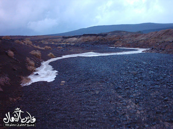 صور للأمطار والسيول على منطقة تبـــوك ... السبت 7 /12 / 1426 هـ  Mk9543_rt3
