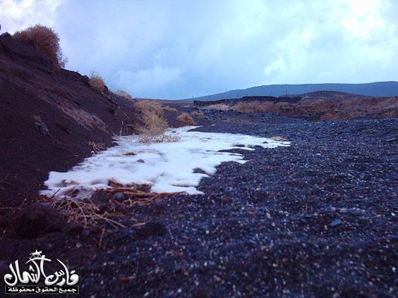 صور للأمطار والسيول على منطقة تبـــوك ... السبت 7 /12 / 1426 هـ  Mk9543_rt4