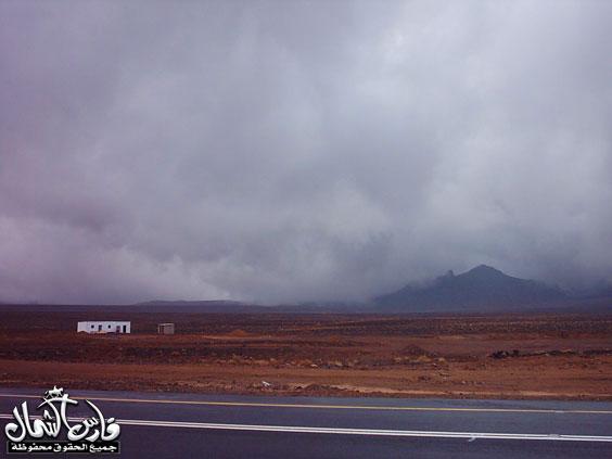 صور للأمطار والسيول على منطقة تبـــوك ... السبت 7 /12 / 1426 هـ  Mk9543_rt5