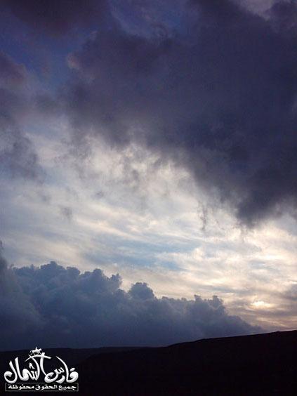 صور للأمطار والسيول على منطقة تبـــوك ... السبت 7 /12 / 1426 هـ  Mk9543_rt9