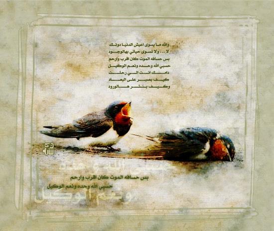 منتديات احلى مصرى | A7la-Masry - صور ومنوعات Mk6097_03