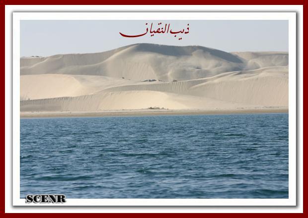 موسوعة شاملة عن المحميات الطبيعية - حصريا على منتدى واحة الإسلام - صفحة 2 Mk73212_aded_620x440
