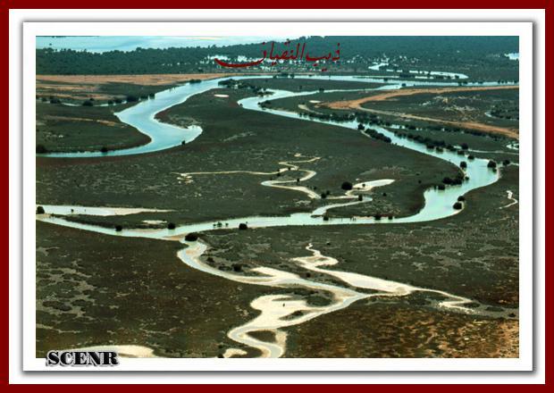 موسوعة شاملة عن المحميات الطبيعية - حصريا على منتدى واحة الإسلام - صفحة 2 Mk73212_dekera%20(1)_620x440