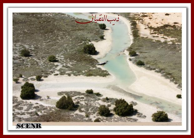 موسوعة شاملة عن المحميات الطبيعية - حصريا على منتدى واحة الإسلام - صفحة 2 Mk73212_dekera%20(3)_620x440