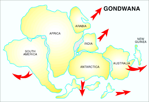 Posibles causas de la desaparición de la anterior humanidad. Gondwana