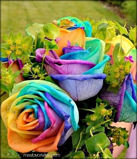 Annversaire Laurette Elle-doit-ses-couleurs-a-des-colorants-alimentaires-meme-si-le-processus-est-toujours-secret_22147_w4601