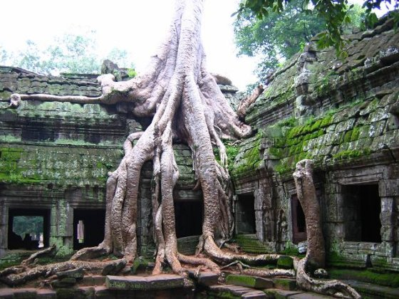 Mysterious New Structures Discovered At Angkor Wat  Angkorwat2