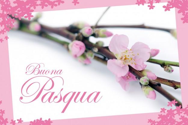 Santa Pasqua 2017 Fiori-e-buona-pasqua