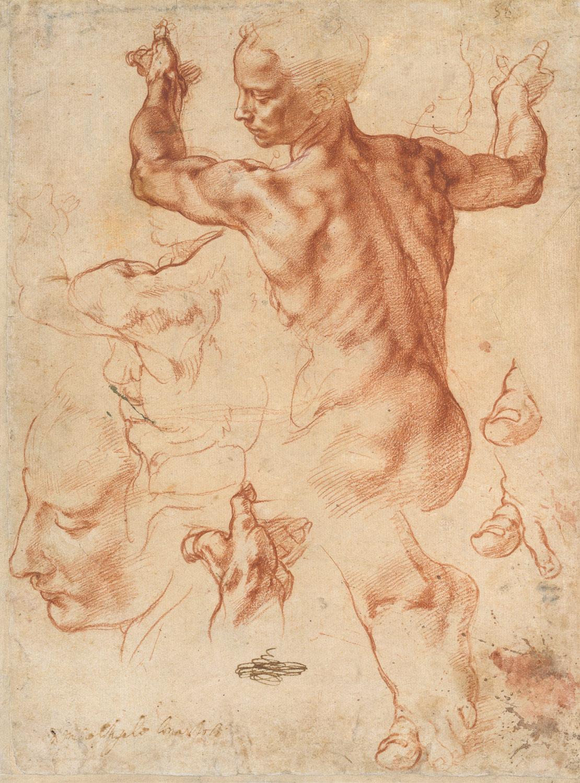 Michelangelo Buonarroti Hb_24.197.2