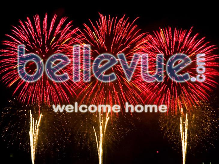 I'M BACK _bellevue-fireworks730_b