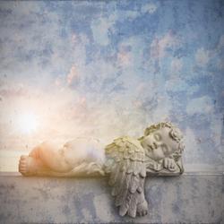 Le sommeil — Bien dormir pour mieux vivre - Page 2 Arton3360-066e2