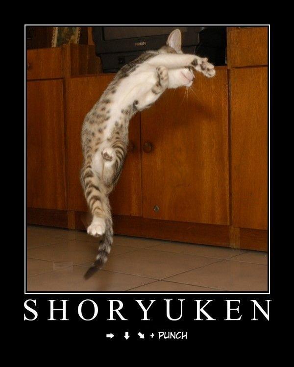 Motivational Posters Shoryuken
