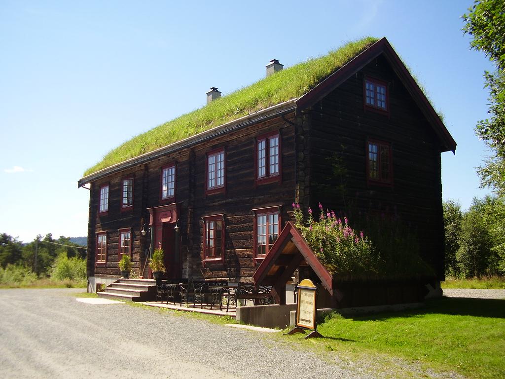 Zeleni krovovi   Travnati-krov-1