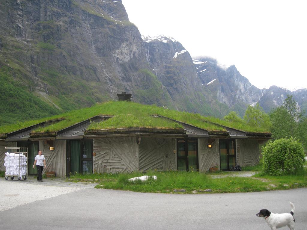 Zeleni krovovi   Travnati-krov-13