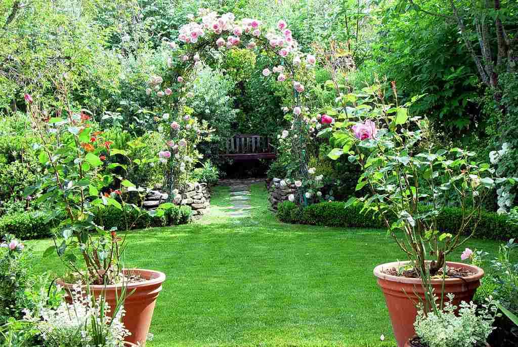 Vrtovi - Page 3 Garden-with-beautiful-plants