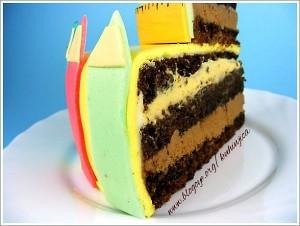 Dečije rodjendanske torte 279-300x226