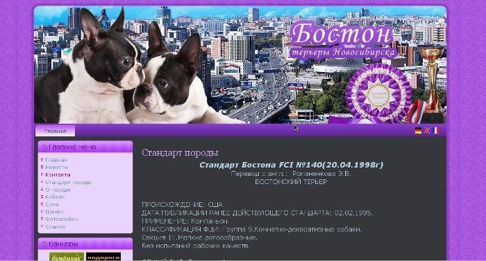 Создание Сайтов.Красивы и Красочные Boston