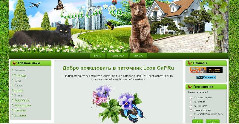 Создание Сайтов.Красивы и Красочные Leoncat