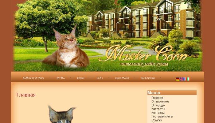 Создание Сайтов.Красивы и Красочные Mistercoon