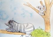 """Les """"Stupid Zèbres"""" c'est nous... - Page 5 536--un-zebre-dans-un-arbre--"""